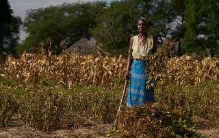 Woman stands in front of her crops