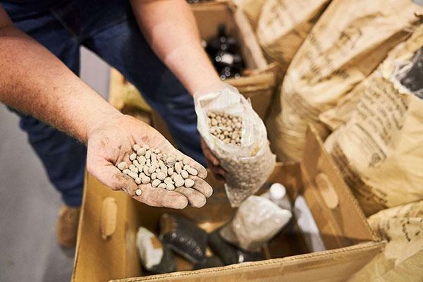 Regenerative agriculture, enriching soils