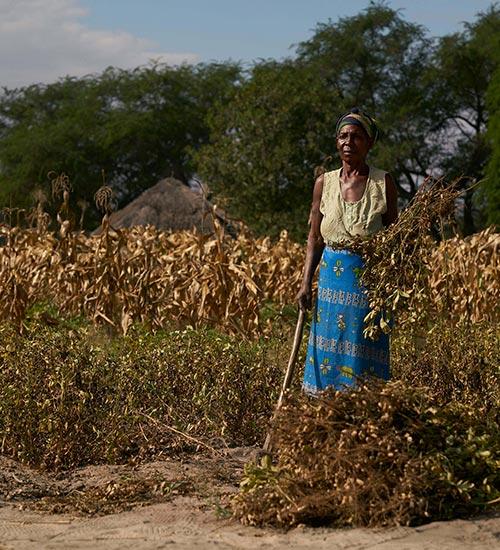 Zambia's Simalaha Community Conservancy
