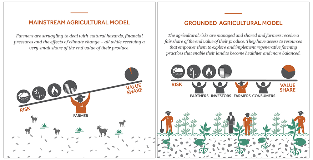 Infographic displaying mainstream agricultural models vs Grounded's agricultural model and explaining shared agriculture risks.