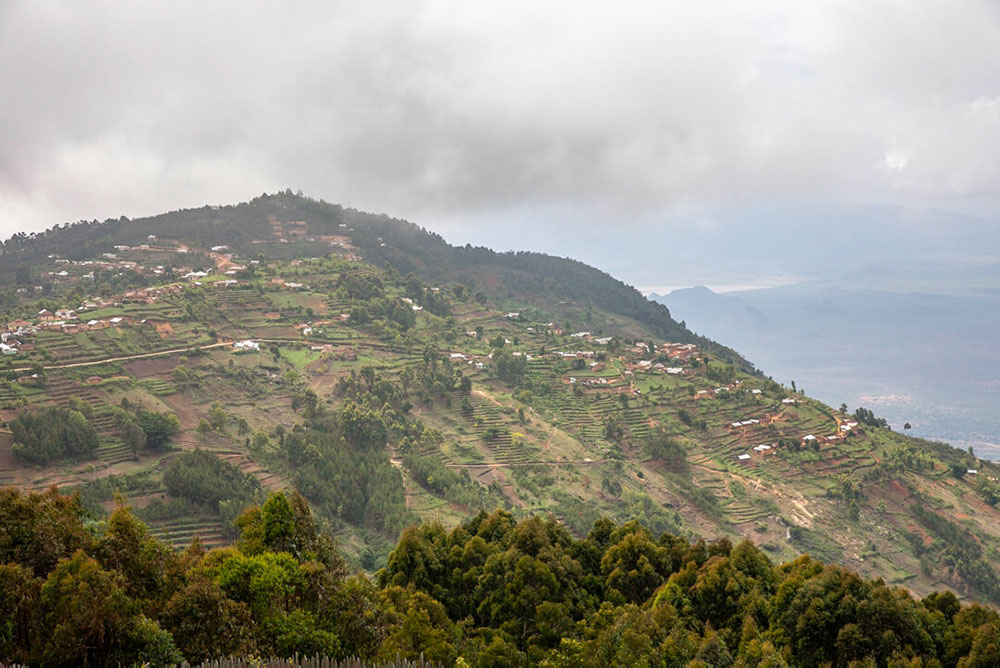 Mountainous agricultural land.