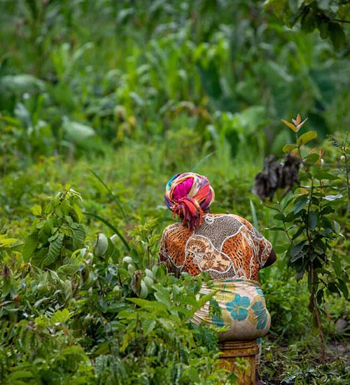 A woman walking through a spice crop plantation in Tanzania.