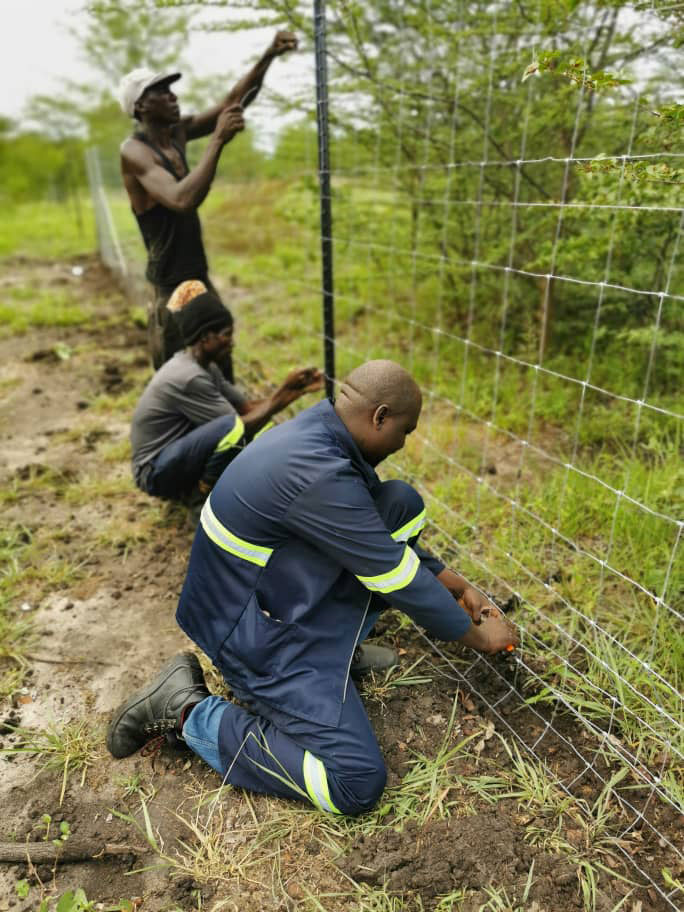 Three men working together to set up fencing.
